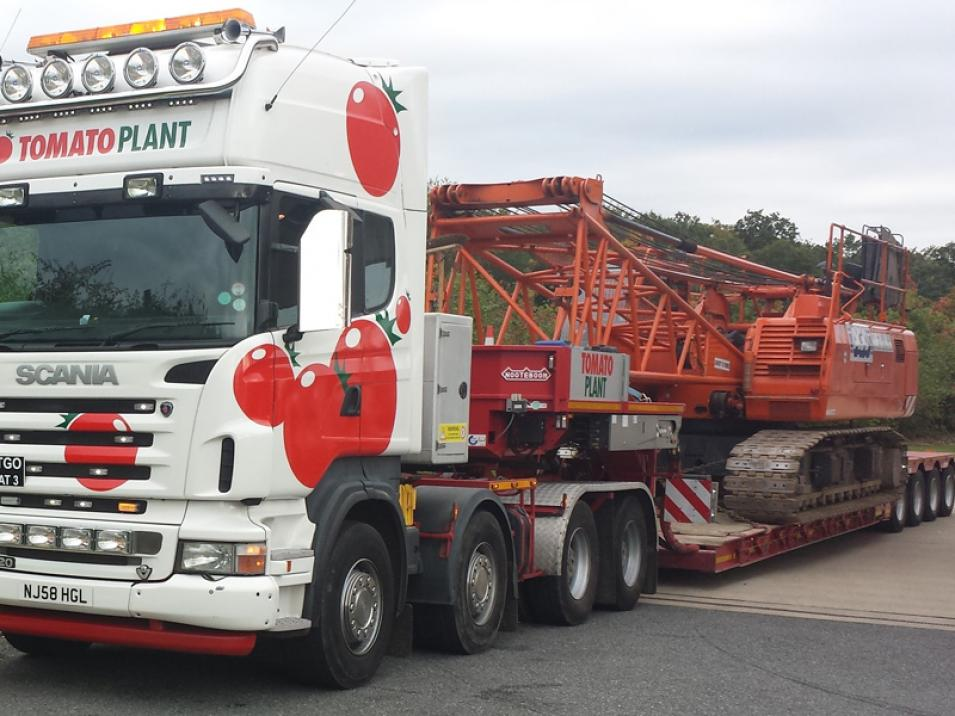 Tomato Plant | Plant Division, 4 Axle Arctic to 86T | Iver, Buckinghamshire & London large 1