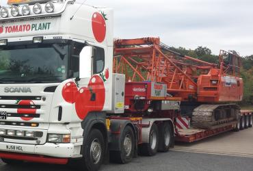 Tomato Plant | Plant Division, 4 Axle Arctic to 86T | Iver, Buckinghamshire & London image 1