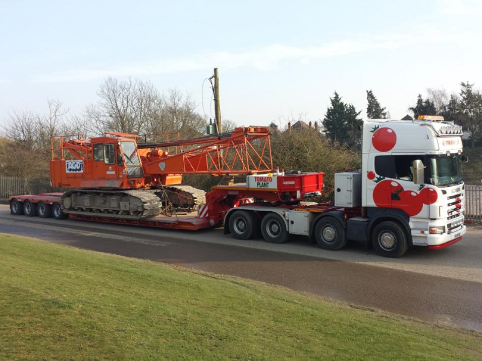 Tomato Plant | Plant Division, 4 Axle Arctic to 86T | Iver, Buckinghamshire & London large 2