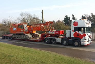 Tomato Plant | Plant Division, 4 Axle Arctic to 86T | Iver, Buckinghamshire & London image 2