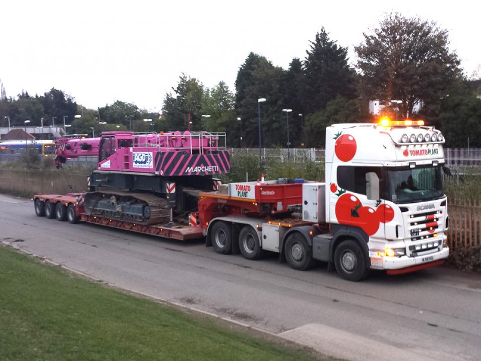 Tomato Plant | Plant Division, 4 Axle Arctic to 86T | Iver, Buckinghamshire & London large 3