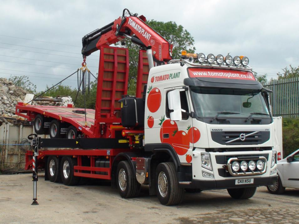 Tomato Plant | Plant Division, Self Loading Rigid to 12T | Iver, Buckinghamshire & London large 7