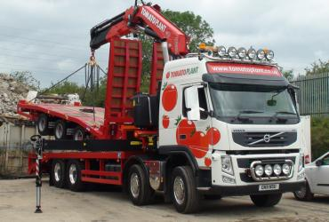 Tomato Plant | Plant Division, Self Loading Rigid to 12T | Iver, Buckinghamshire & London image 7