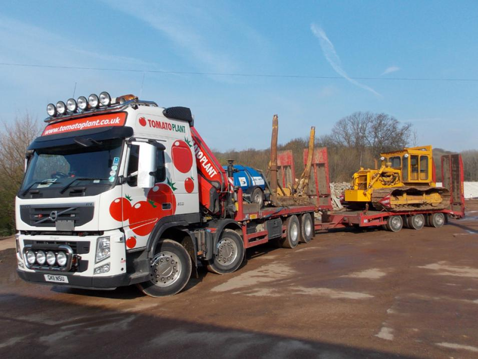 Tomato Plant | Plant Division, Self Loading Rigid to 12T | Iver, Buckinghamshire & London large 8