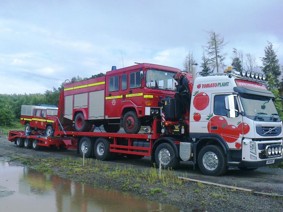 Tomato Plant | Plant Division, Self Loading Rigid to 12T | Iver, Buckinghamshire & London large 9