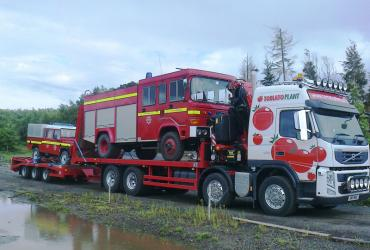 Tomato Plant | Plant Division, Self Loading Rigid to 12T | Iver, Buckinghamshire & London image 9