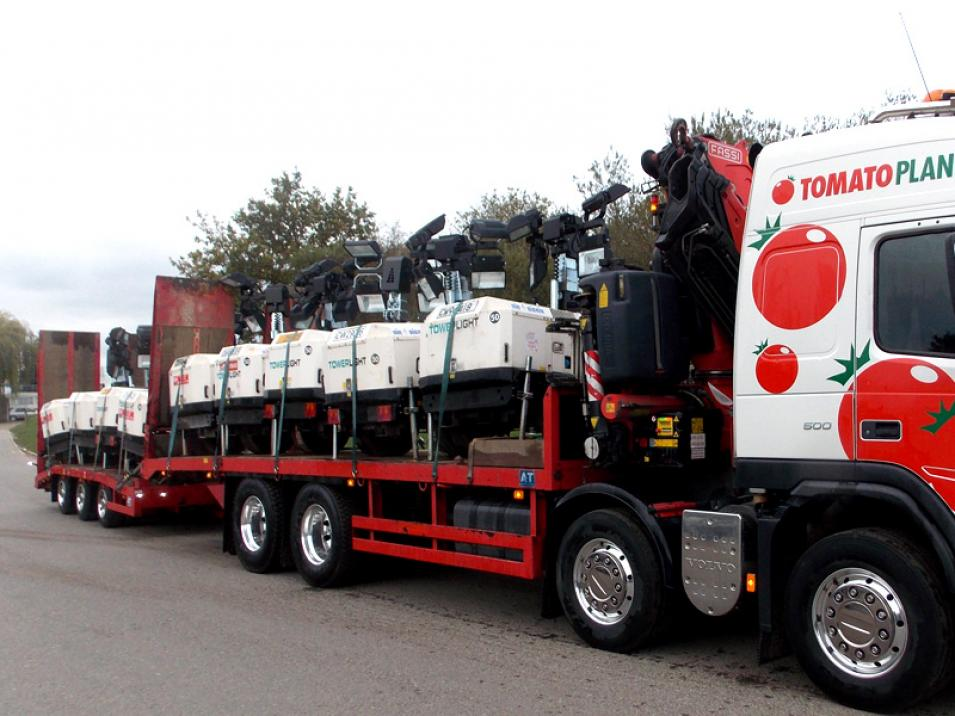 Tomato Plant | Plant Division, Self Loading Rigid to 12T | Iver, Buckinghamshire & London large 10