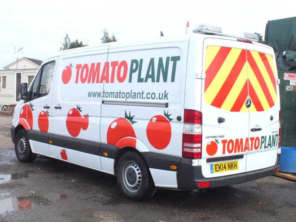Tomato Plant | Drainage & CCTV Division, Jetting Van Unit | Iver, Buckinghamshire & London large 2