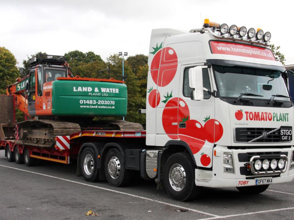 Tomato Plant | Plant Division, 3 Axle Arctic to 35T | Iver, Buckinghamshire & London large 1