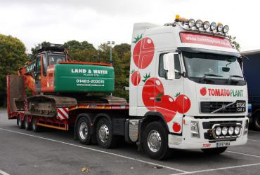 Tomato Plant | Plant Division, 3 Axle Arctic to 35T | Iver, Buckinghamshire & London image 1