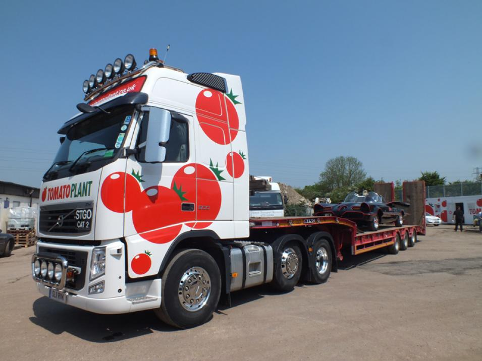 Tomato Plant | Plant Division, 3 Axle Arctic to 35T | Iver, Buckinghamshire & London large 7