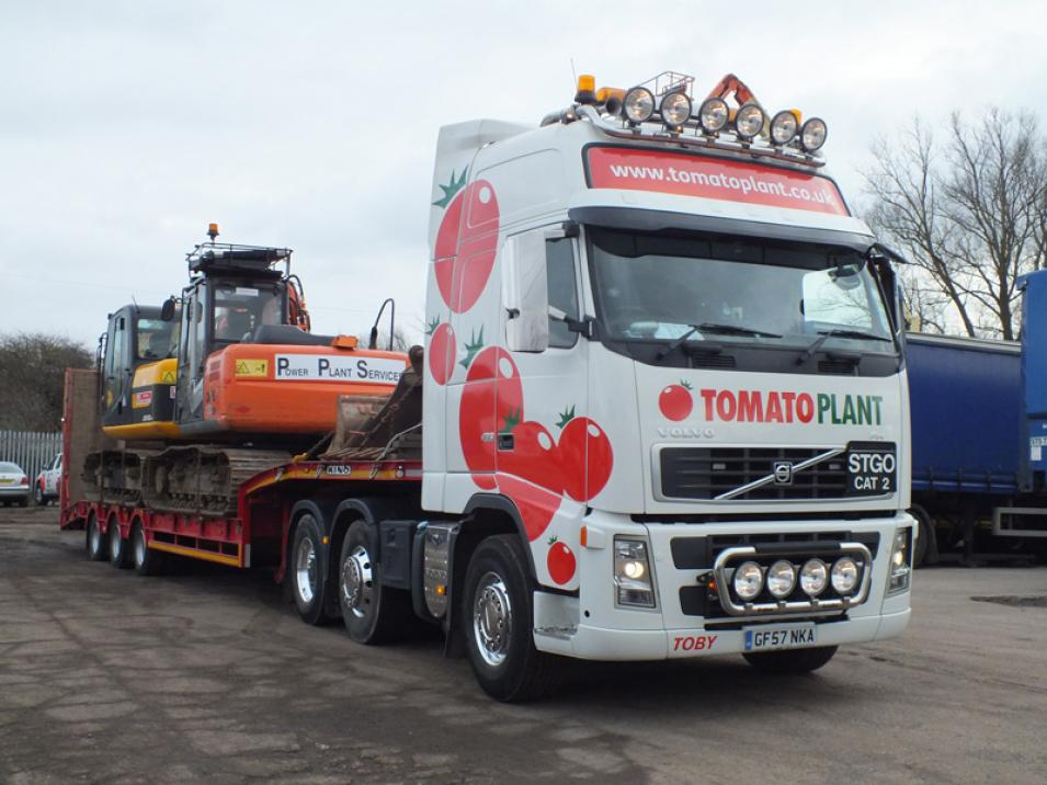 Tomato Plant | Plant Division, 3 Axle Arctic to 35T | Iver, Buckinghamshire & London large 8