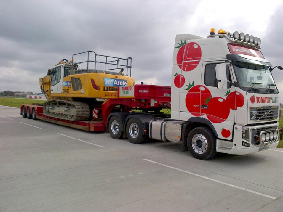 Tomato Plant | Plant Division, 3 Axle Arctic to 35T | Iver, Buckinghamshire & London large 9