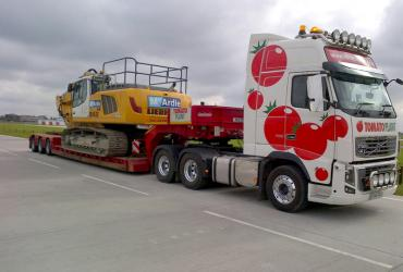 Tomato Plant | Plant Division, 3 Axle Arctic to 35T | Iver, Buckinghamshire & London image 9