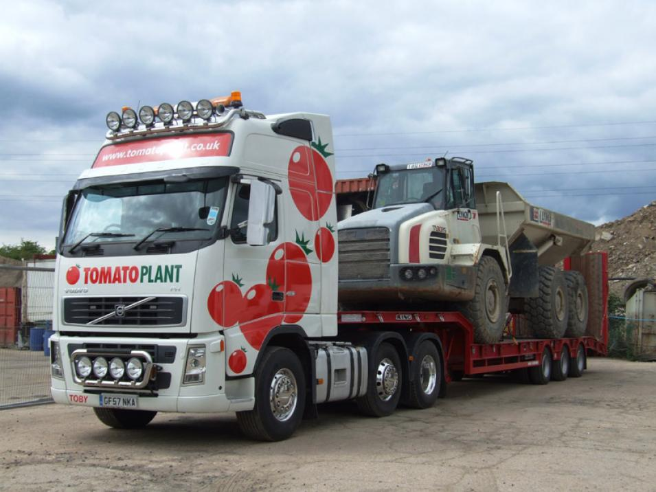 Tomato Plant | Plant Division, 3 Axle Arctic to 35T | Iver, Buckinghamshire & London large 2