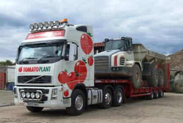 Tomato Plant | Plant Division, 3 Axle Arctic to 35T | Iver, Buckinghamshire & London image 2