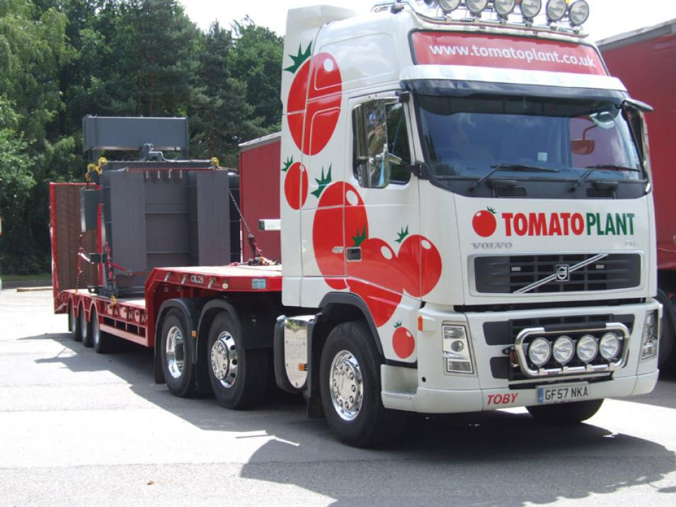 Tomato Plant | Plant Division, 3 Axle Arctic to 35T | Iver, Buckinghamshire & London large 3