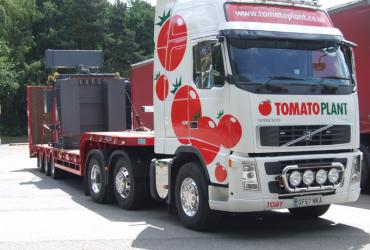 Tomato Plant | Plant Division, 3 Axle Arctic to 35T | Iver, Buckinghamshire & London image 3
