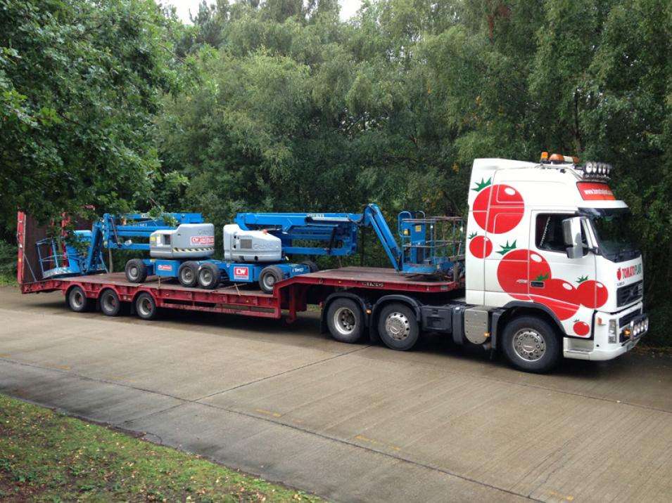 Tomato Plant | Plant Division, 3 Axle Arctic to 35T | Iver, Buckinghamshire & London large 11
