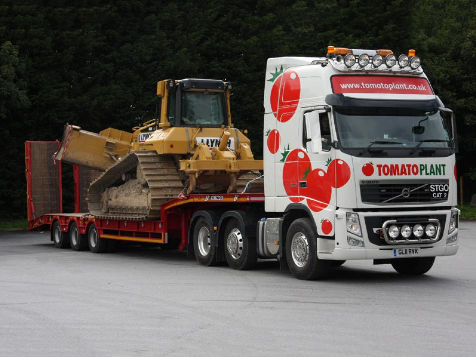 Tomato Plant | Plant Division, 3 Axle Arctic to 35T | Iver, Buckinghamshire & London large 12