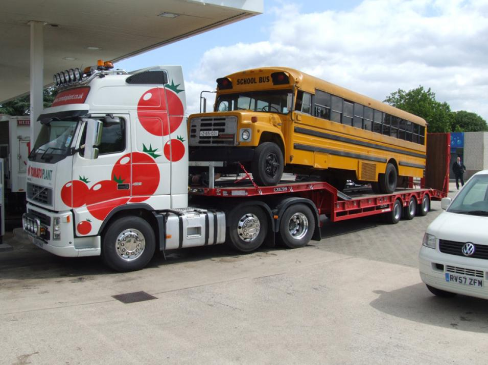 Tomato Plant | Plant Division, 3 Axle Arctic to 35T | Iver, Buckinghamshire & London large 13
