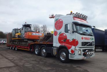 Tomato Plant | Plant Division, 3 Axle Arctic to 35T | Iver, Buckinghamshire & London image 4