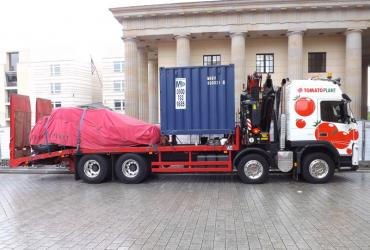 Tomato Plant | Plant Division, Self Loading Rigid to 12T | Iver, Buckinghamshire & London image 2