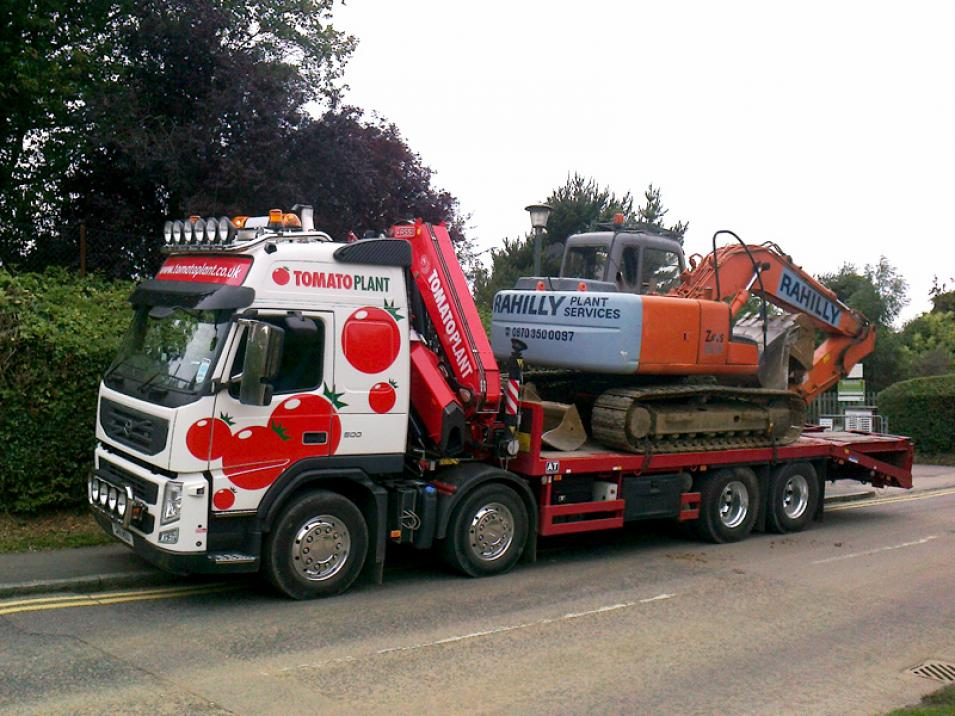 Tomato Plant | Plant Division, Self Loading Rigid to 12T | Iver, Buckinghamshire & London large 3