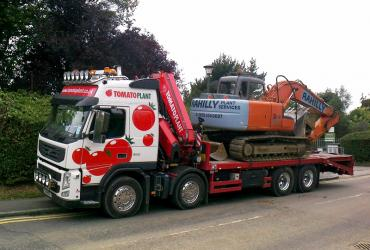 Tomato Plant | Plant Division, Self Loading Rigid to 12T | Iver, Buckinghamshire & London image 3