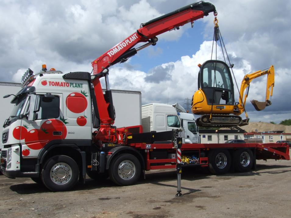 Tomato Plant | Plant Division, Self Loading Rigid to 12T | Iver, Buckinghamshire & London large 4