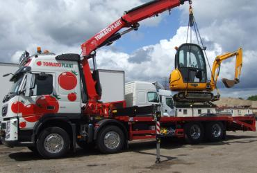 Tomato Plant | Plant Division, Self Loading Rigid to 12T | Iver, Buckinghamshire & London image 4