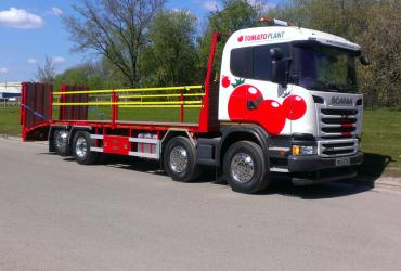 Tomato Plant | Plant Division, Rigid Beavertail to 18T | Iver, Buckinghamshire & London image 1