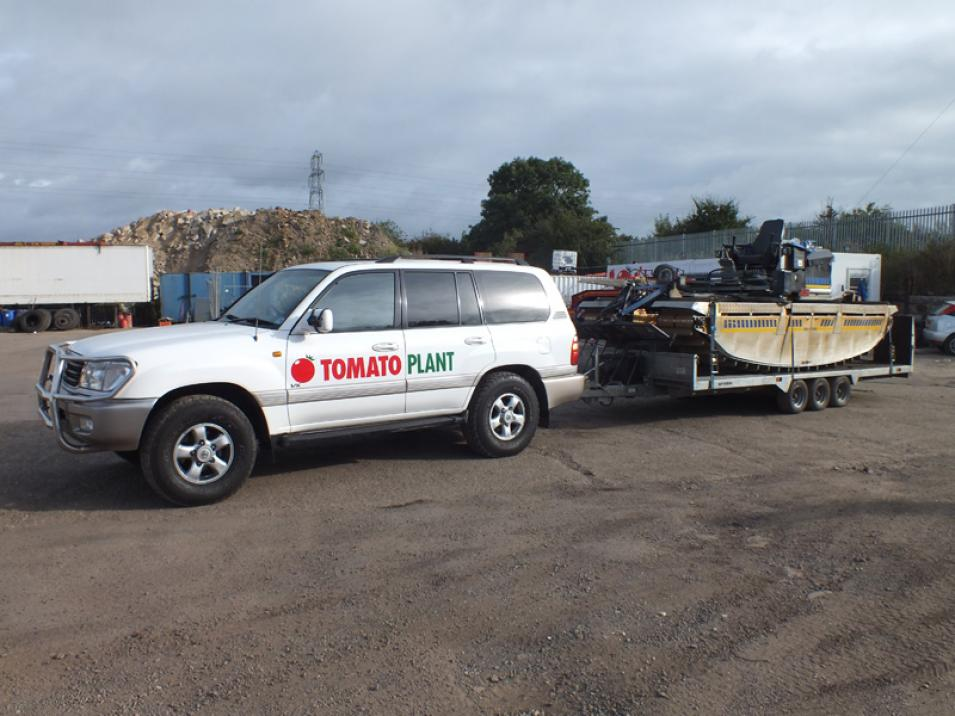 Tomato Plant | Plant Division, 4x4 Towing Vehicles to 3.5T | Iver, Buckinghamshire & London large 1