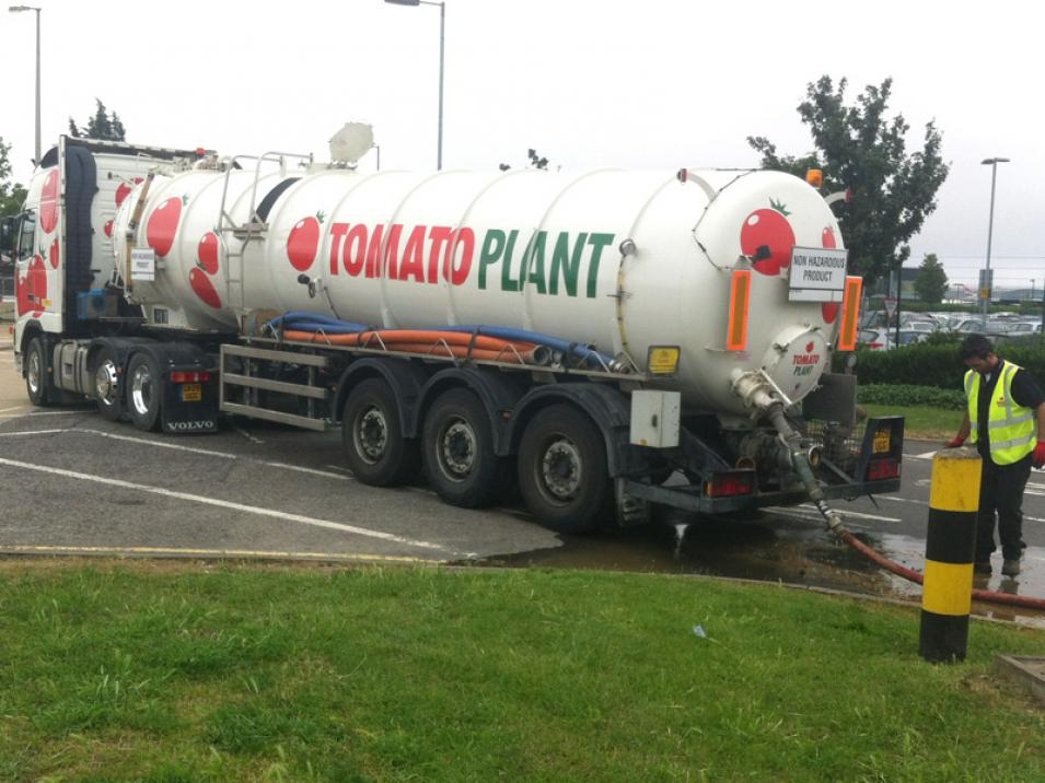 Tomato Plant | Tanker Division, Articulated | Iver, Buckinghamshire & London large 3