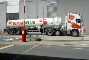 Tomato Plant | Tanker Division, Articulated | Iver, Buckinghamshire & London image 4